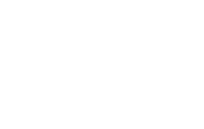 Pulte_WHITE PNG.png