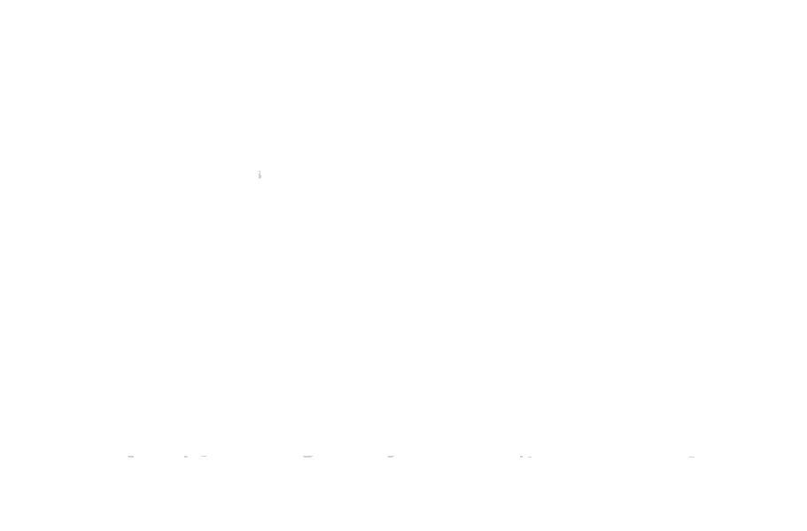 pgr-settlement-stacked-WHITE.png